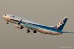 RUNWAY23.TADAさんが、羽田空港で撮影した全日空 737-881の航空フォト(写真)