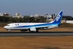 RUNWAY23.TADAさんが、伊丹空港で撮影した全日空 737-881の航空フォト(写真)