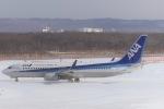 RUNWAY23.TADAさんが、新千歳空港で撮影した全日空 737-881の航空フォト(写真)