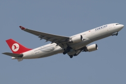 木人さんが、成田国際空港で撮影したターキッシュ・エアラインズ A330-203の航空フォト(飛行機 写真・画像)