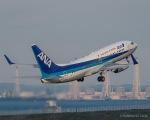 RUNWAY23.TADAさんが、羽田空港で撮影した全日空 737-781の航空フォト(写真)