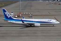 rjジジィさんが、中部国際空港で撮影した全日空 737-881の航空フォト(飛行機 写真・画像)