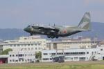 みのフォトグラファさんが、名古屋飛行場で撮影した航空自衛隊 C-130H Herculesの航空フォト(写真)