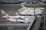 さくらの城南山。さんが、羽田空港で撮影した日本航空 737-846の航空フォト(写真)
