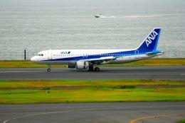 まいけるさんが、羽田空港で撮影した全日空 A320-211の航空フォト(飛行機 写真・画像)