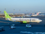 RUNWAY23.TADAさんが、羽田空港で撮影したソラシド エア 737-81Dの航空フォト(飛行機 写真・画像)