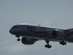 HNDマンさんが、羽田空港で撮影した全日空 787-8 Dreamlinerの航空フォト(写真)