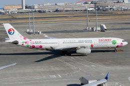 杏奈さんが、羽田空港で撮影した中国東方航空 A330-343Xの航空フォト(飛行機 写真・画像)