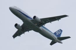 木人さんが、成田国際空港で撮影した全日空 A320-214の航空フォト(飛行機 写真・画像)