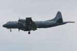 マリオ先輩さんが、横田基地で撮影したカナダ軍 CP-140 Auroraの航空フォト(写真)