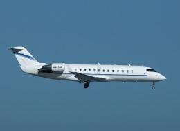 garrettさんが、羽田空港で撮影したウィルミントン・トラスト・カンパニー CL-600-2B19 Regional Jet CRJ-100SEの航空フォト(飛行機 写真・画像)