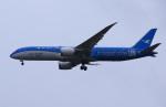 Willieさんが、成田国際空港で撮影した厦門航空 787-9の航空フォト(写真)