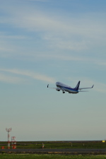 guttyさんが、釧路空港で撮影した全日空 737-881の航空フォト(飛行機 写真・画像)