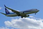 guttyさんが、旭川空港で撮影した全日空 737-881の航空フォト(写真)