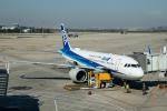 xingyeさんが、瀋陽桃仙国際空港で撮影した全日空 A320-271Nの航空フォト(写真)