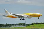ちゃぽんさんが、成田国際空港で撮影したノックスクート 777-212/ERの航空フォト(飛行機 写真・画像)