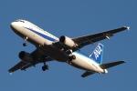 木人さんが、成田国際空港で撮影した全日空 A320-211の航空フォト(写真)