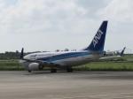Naiki@南の島からさんが、宮古空港で撮影した全日空 737-781の航空フォト(写真)