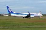 もぐ3さんが、新潟空港で撮影した全日空 737-881の航空フォト(写真)
