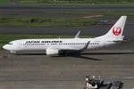たみぃさんが、羽田空港で撮影した日本航空 737-846の航空フォト(写真)