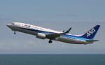 asuto_fさんが、大分空港で撮影した全日空 737-8ALの航空フォト(写真)