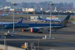 シュウさんが、羽田空港で撮影したベトナム航空 A350-941XWBの航空フォト(写真)