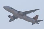 セブンさんが、関西国際空港で撮影したタイガーエア台湾 A320-232の航空フォト(飛行機 写真・画像)