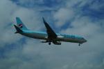 FRTさんが、金海国際空港で撮影した大韓航空 737-8BKの航空フォト(飛行機 写真・画像)