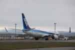 ATOMさんが、新千歳空港で撮影した全日空 737-8ALの航空フォト(写真)