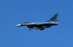 jp arrowさんが、岐阜基地で撮影した航空自衛隊 F-2Aの航空フォト(写真)