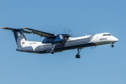 Y-Kenzoさんが、成田国際空港で撮影したオーロラ DHC-8-402Q Dash 8の航空フォト(写真)