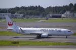 とらとらさんが、成田国際空港で撮影した日本航空 737-846の航空フォト(写真)