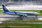 Tomo_mcz_lgmさんが、羽田空港で撮影した全日空 737-881の航空フォト(写真)