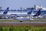 とらとらさんが、成田国際空港で撮影したエア・メディカル・サービス BAe-125-800Aの航空フォト(飛行機 写真・画像)