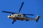 kaeru6006さんが、厚木飛行場で撮影した海上自衛隊 SH-60Kの航空フォト(写真)