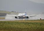 GOQさんが、函館空港で撮影した全日空 767-381/ERの航空フォト(写真)