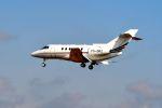 まいけるさんが、ファンボロー空港で撮影したネットジェット・インターナショナル Hawker 800の航空フォト(写真)