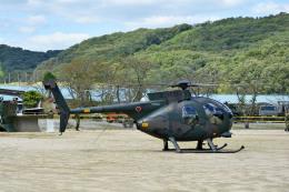 Gambardierさんが、三軒屋駐屯地で撮影した陸上自衛隊 OH-6Dの航空フォト(飛行機 写真・画像)