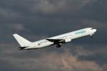 BTYUTAさんが、アムステルダム・スキポール国際空港で撮影したユーロアトランティック・エアウェイズ 767-36N/ERの航空フォト(写真)