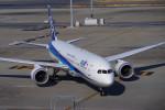 K OOKAWAさんが、ヘンダーソン・エクゼクティブ空港で撮影した全日空 787-9の航空フォト(写真)