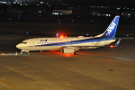 M.Ochiaiさんが、宮崎空港で撮影した全日空 737-8ALの航空フォト(写真)