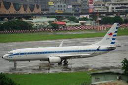 JA8037さんが、台北松山空港で撮影した中華民国空軍 737-8ARの航空フォト(飛行機 写真・画像)