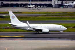 まいけるさんが、羽田空港で撮影したマン島企業所有 737-7EI BBJ の航空フォト(写真)