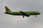 クルーズさんが、成田国際空港で撮影したS7航空 A320-214の航空フォト(写真)