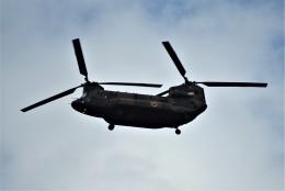 senbaさんが、埼玉県朝霞市 朝霞水門で撮影した陸上自衛隊 CH-47JAの航空フォト(飛行機 写真・画像)