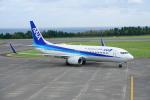Sugikiyoさんが、鳥取空港で撮影した全日空 737-881の航空フォト(写真)
