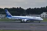 わいどあさんが、成田国際空港で撮影した全日空 787-8 Dreamlinerの航空フォト(写真)