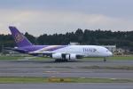 わいどあさんが、成田国際空港で撮影したタイ国際航空 A380-841の航空フォト(写真)