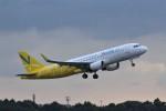 わいどあさんが、成田国際空港で撮影したバニラエア A320-214の航空フォト(写真)