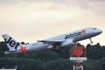 わいどあさんが、成田国際空港で撮影したジェットスター・ジャパン A320-232の航空フォト(写真)